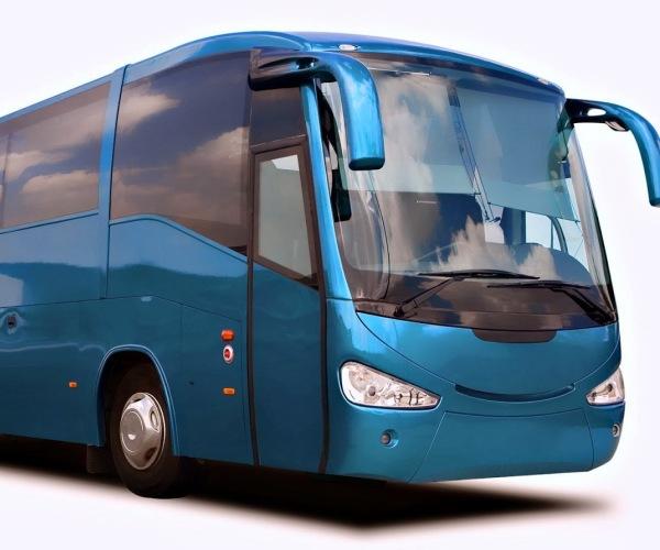 50 passengers Bus